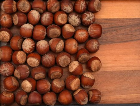Organic Hazelnuts. For texture or background. Imagens
