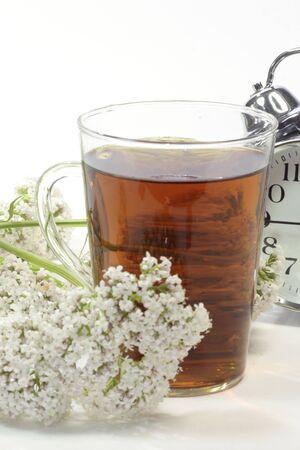 valerian: Tisana in un bicchiere con fiori di valeriana e sveglia su sfondo bianco