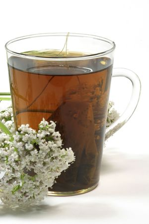 Herbal tea in a glass with valerian blossoms on white background Stock Photo