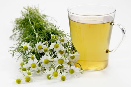 Herbal tea with fresh camomile over white background Standard-Bild