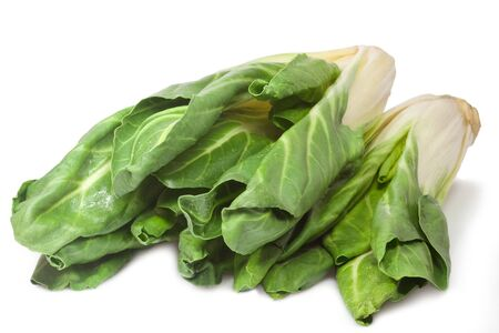 Closeup of fresh silverbeet - isolated on white background