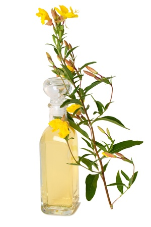 Bottle of oil with fresh evening primerose - isolated Stock Photo