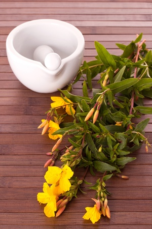 primrose oil: Evening primerose with mortar and pestle on wooden background Stock Photo
