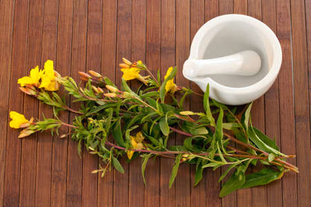 primrose oil: Evening primroses with mortar and pestle over wooden background Stock Photo
