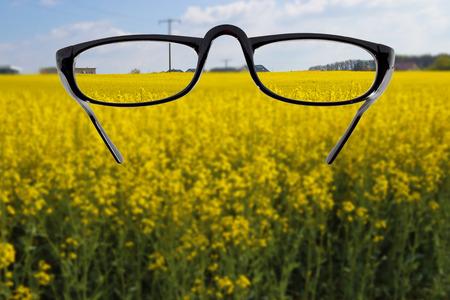 debility: Glasses against cloudy landscape background