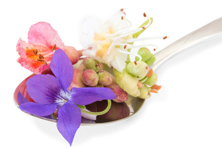 Close up of different bach flowers on a tea spoon