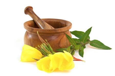 oenothera biennis: Evening primroses near wooden mortar and pestle on white background
