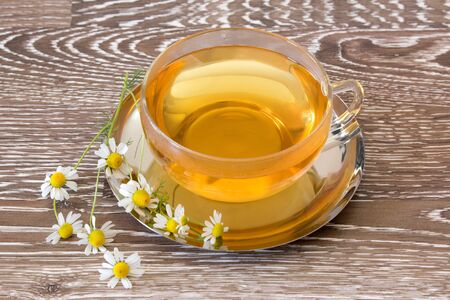 botanical medicine: Fresh brewed chamomile tea in a tea cup with chamomile blooms