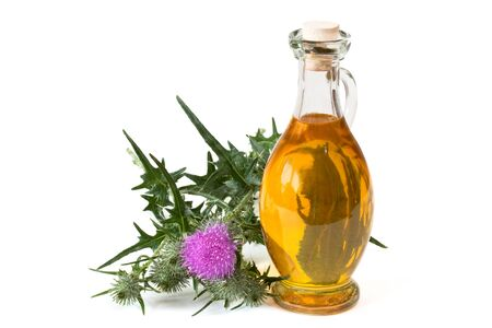 Milk thistle near glass bottle with oil on white background Standard-Bild