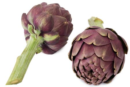 green and purple vegetables: Two fresh artichokes - isolated on white background