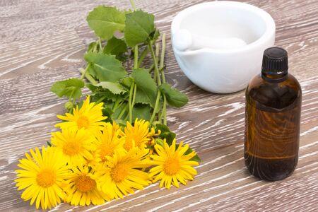 mortar and pestle medicine: Fresh coltsfoot with medicine bottle, mortar and pestle