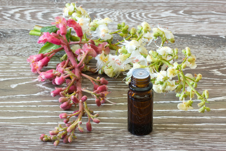 Bach flower remedies with white and red chestnut on wooden background