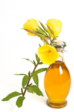 evening primrose plant near bottle of oil