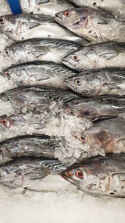 fresh fish on market place Stock Photo