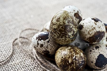 huevos de codorniz: Huevos de codorniz primer en saco
