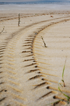 Close up View of Tire Tracks Prints in Sand on a Beach Stock Photo - 25109154