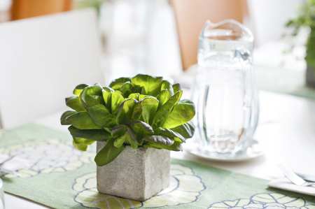 Bunch of basil in stone decorative pot on the table. photo