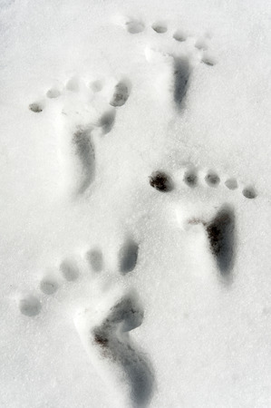 empty handed: Small traces footprint imitation on snow surface  Closeup  Humor  Stock Photo
