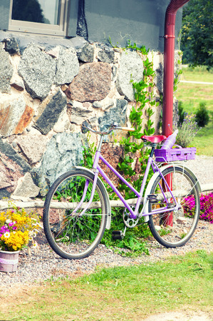 original bike: Glamour purple lavender rural retro bicycle. Sunshine summertime outdoors. Stock Photo