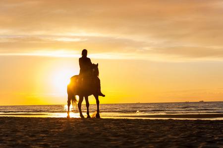 femme et cheval: Equitation à la plage sur fond coucher de soleil. La mer Baltique. Été multicolore dynamique horizontale de l'image à l'extérieur.