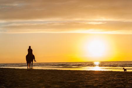 femme et cheval: Equitation à la plage sur fond coucher de soleil. La mer Baltique. Été multicolore image horizontale à l'extérieur. Banque d'images