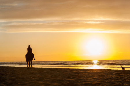 Horseriding at the beach on sunset background. Baltic sea. Multicolored summertime outdoors horizontal image. Archivio Fotografico