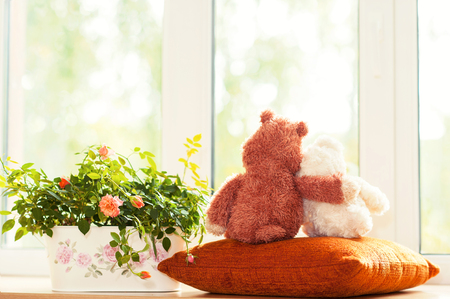 Couple loving embracing teddy bear toys  looking through the window sitting on window-sill near pot with rose flowers. Indoors multicolored horizontal image with filter.