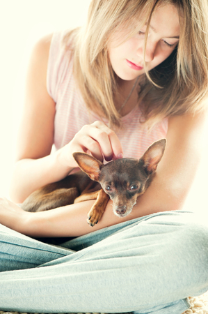 toyterrier: Tender love. Young girl in pyjamas holding and stroking her lovely Toy-terrier dog in morning rays of sunlight. Multicolored vibrant vertical indoors image. Stock Photo