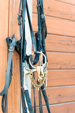 bridle: Horse bridle hanging on stable wooden wall. Summertime closeup outdoors vertical image. Stock Photo