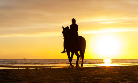woman and horse: Silhouette of horseriding along the Baltic sea coastline on sunset background. Vibrant multicolored summertime outdoors horizontal image.