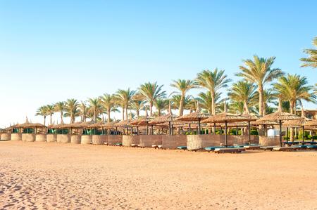 sunshade: Row of wattled straw umbrellas on sunny summer tropical beach. Egypt. Sharm-el-sheikh. Outdoors. Stock Photo