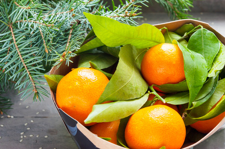 Many Ripe tangerines with leaves in cardboard box. Indoors still-life horizontal image