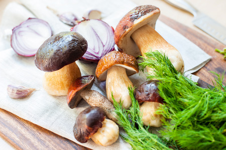 Cooking soup - crop of delicious porcini mushrooms on wooden background. Boletus Edulis (var. Aereus). Multicolored indoors horizontal still life image.