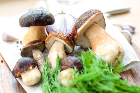 Ready for cooking soup with delicious porcini mushrooms on wooden background. Boletus Edulis (var. Aereus). Multicolored indoors horizontal still life image. Stock Photo