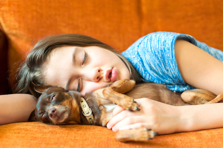 toyterrier: Sweet dream. Young girl sleeping hugging her lovely little brown Toy-terrier dog on a coach. Multicolored vibrant horizontal indoors image Stock Photo