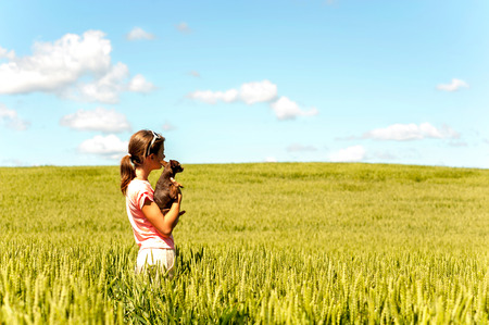 toyterrier: Young teenage girl in wheat field holding her lovely little toy-terrier dog contemplating the nature. Multicolored vibrant outdoors summertime horizontal image with cloudy sky background. Stock Photo