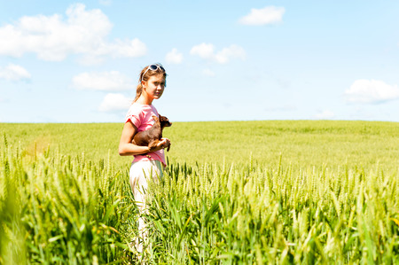 Young teenage girl in wheat field holding her lovely little toy-terrier dog. Multicolored vibrant outdoors summertime horizontal image with cloudy sky background.