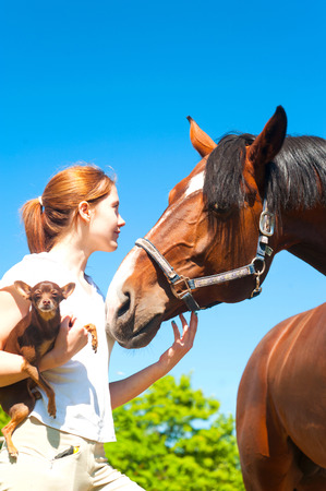 Young cheerful teenage redhead girl with her favorite chestnut horse and small dog. Vibrant colored outdoors vertical image.