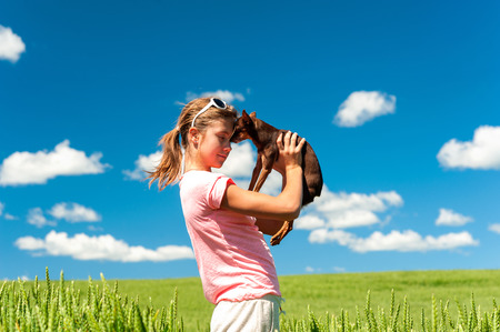 toyterrier: Young cheerful teenage girl in wheat field holding her lovely little toy-terrier dog. Multicolored vibrant outdoors summertime horizontal image with cloudy sky background. Stock Photo