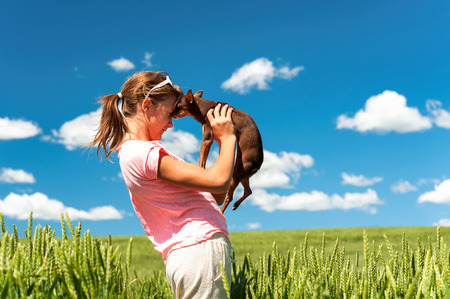 Young cheerful teenage girl in wheat field holding her lovely little toy-terrier dog. Multicolored vibrant outdoors summertime horizontal image with cloudy sky background. Stock Photo