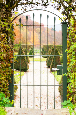 triangle shaped: Triangle shaped topiary green trees in old ornamental garden beyond metal ancient gate. Front view. Burresheim Castle in autumn, Germany. Outdoors vertical image