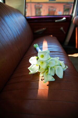 callas: Callas flowers festive bouquet in sunbeam on rear leather seats in vintage car. Vibrant colored vertical image indoors image. Stock Photo
