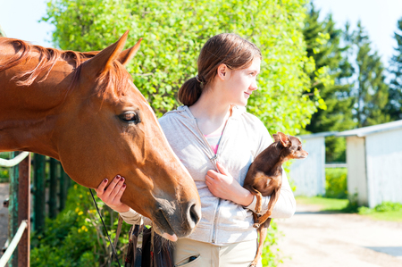 toyterrier: Young cheerful teenage redhead girl with her favorite chestnut horse and small dog. Vibrant colored outdoors horizontal image.