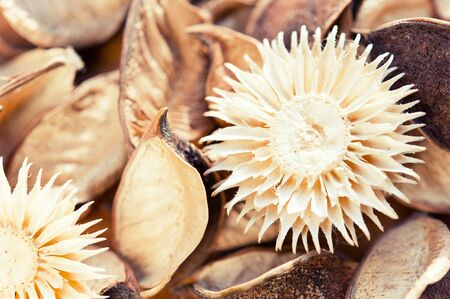 potpourri: Natural dry flowers potpourri material for decoration. Closeup horizontal image with vintage filter.