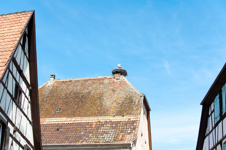 Stork sitting in nest on top of ancient tiled roof. Sunny day with blue clear cloudless sky background. Old town of Alsace region, France. Colored horizontal image.