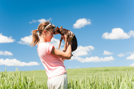 Young cheerful teenage girl in wheat field hugging her lovely little toy-terrier dog. Multicolored vibrant outdoors summertime horizontal image with cloudy sky background.