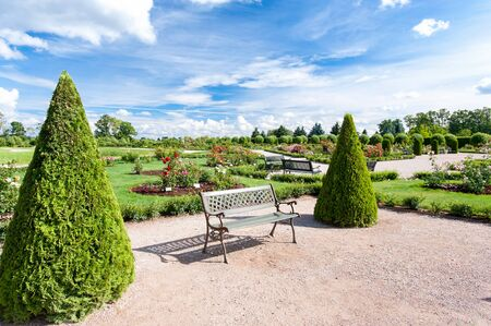 Triangle shaped topiary green trees in old ornamental garden. Rundale, Latvia, Europe. Multicolored summertime horizontal outdoors image. Stock Photo