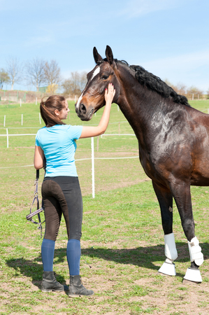 Woman owner scratching neck of  her favorite brown horse. Colored outdoors vertical springtime image. Фото со стока