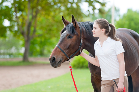 touching noses: Best friends. Young teenage girl owner together with her favorite brown horse looking forward. Vibrant colored outdoors horizontal image.