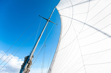 curve: White yacht sails in sunlight on blue cloudy sky background. View from below. Outdoors summertime vibrant colored horizontal image.